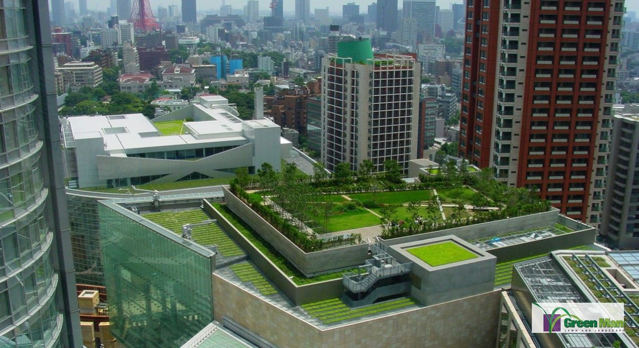 Green Man Lawn & Landscape-Green roof on a building