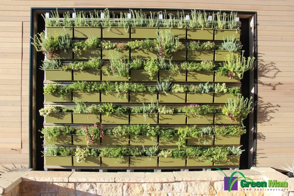 City-View-Green-Wall-Project-3