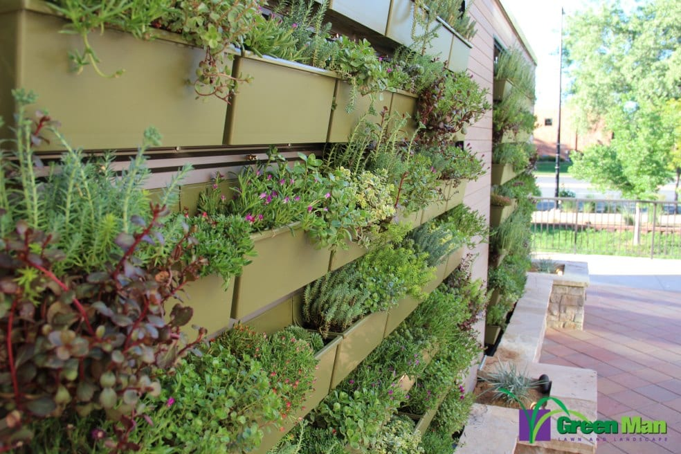 City-View-Green-Wall-Project-7