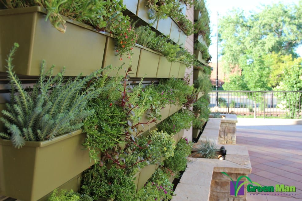 City-View-Green-Wall-Project-8