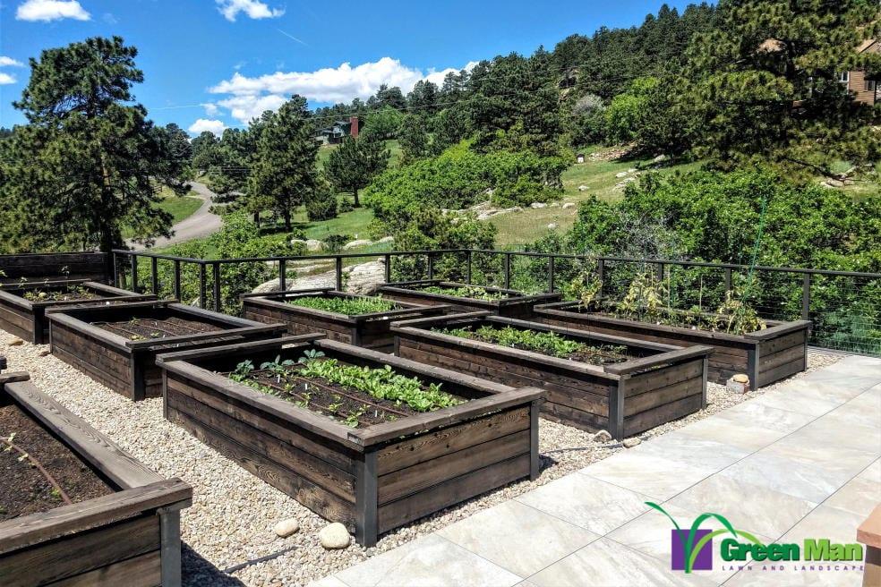 Morrison Roof Garden Project 5 - Morrison Roof Garden